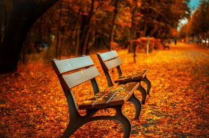 3-things-to-keep-in-mind-when-looking-for-a-house-this-fall